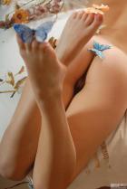 lera_butterfly_i21.jpg